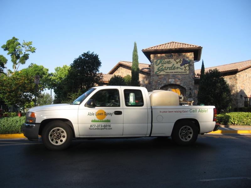 olive garden lawn spray pest control chnch bugs ants